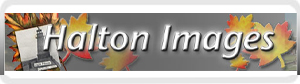Halton images banner