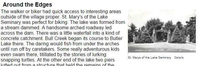 Screenshot from Libertyville essay